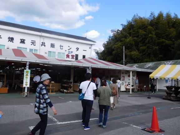 緑陰訓練「益子焼と梨狩り」(川崎市育成会手をむすぶ親の会)